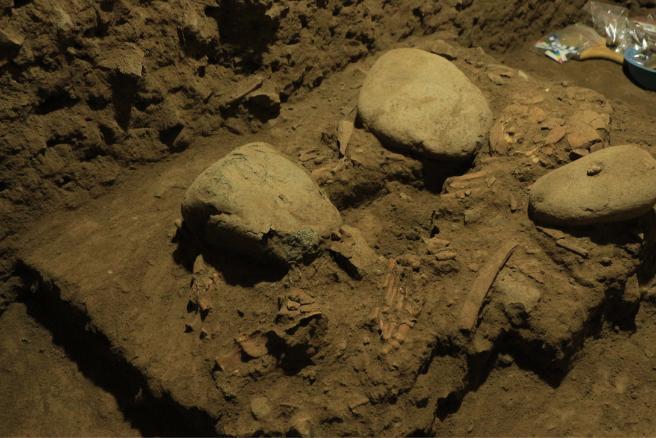 7.000 jaar oud DNA van tienermeisje werpt nieuw licht op geschiedenis van de mens