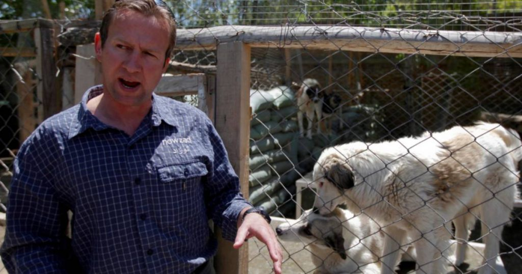 A British man succeeded in evacuating more than 150 dogs and cats from Kabul    Abroad