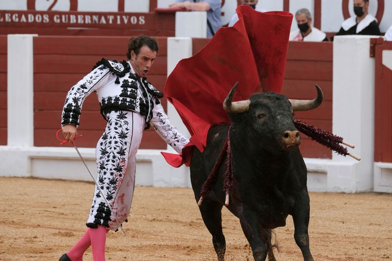Bullfighting festival canceled after bulls were called 'Feminista' and 'Nigeriano'