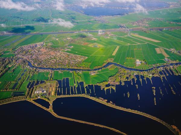 Juterassen zijn in Nederland ontwikkeld voor distributie naar de Verenigde Staten
