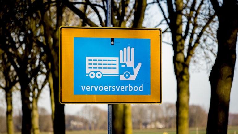 Vogelgriep in Terwolde (Foto: ANP / Koen van Weel)