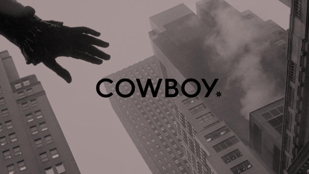 Cowboy Verenigde Staten VS