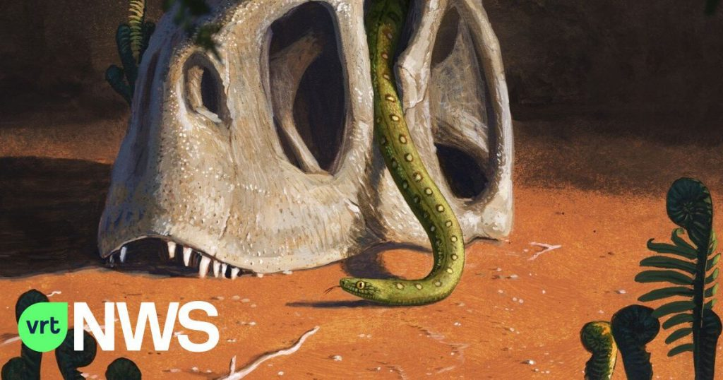 All modern snakes are descended from some survivors of the asteroid that killed the dinosaurs