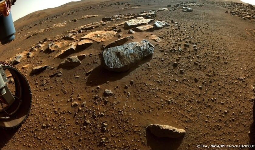 Study: Persevering Mars explorer helps search for life
